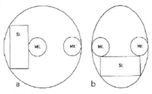 MAN_Meridian_Grafik8